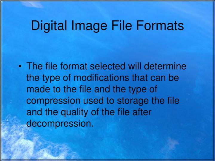 Digital Image File Formats