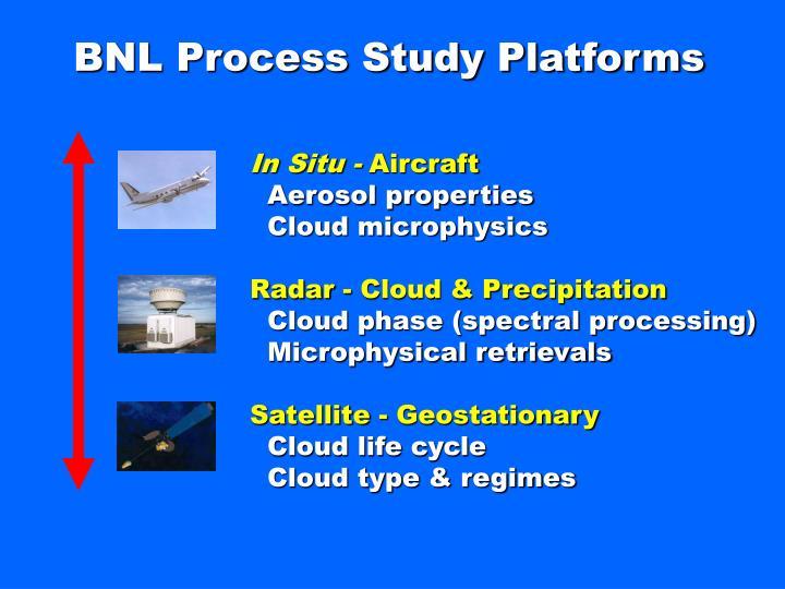 BNL Process Study Platforms