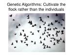 genetic algorithms cultivate the flock rather than the individuals