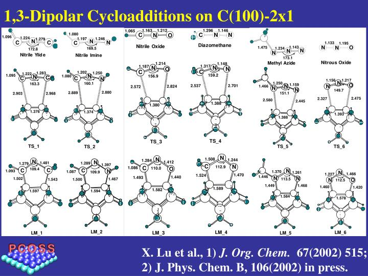 1,3-Dipolar Cycloadditions on C(100)-2x1