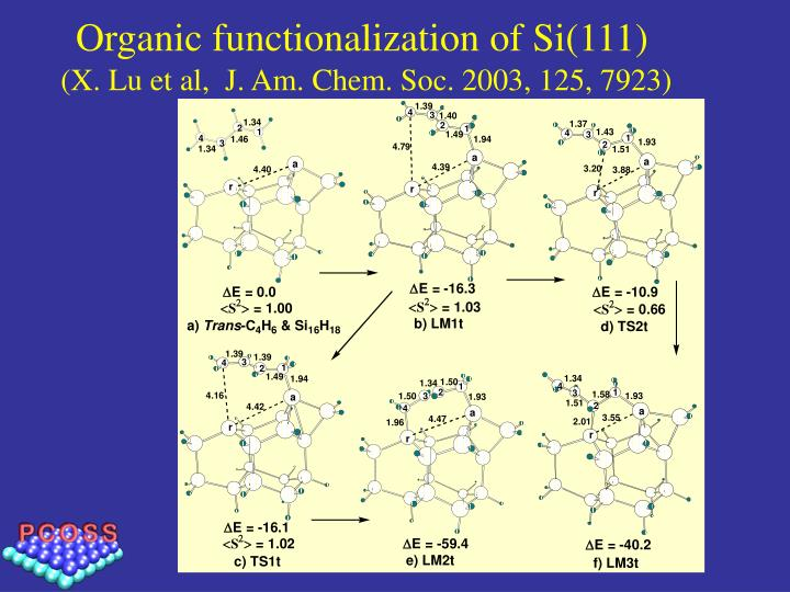 Organic functionalization of Si(111)