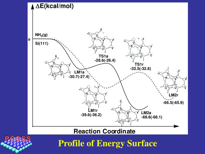 Profile of Energy Surface