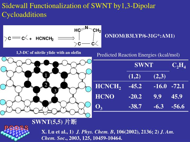 Sidewall Functionalization of SWNT by1,3-Dipolar Cycloadditions