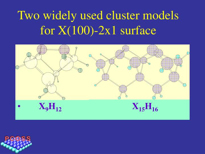 Two widely used cluster models  for X(100)-2x1 surface
