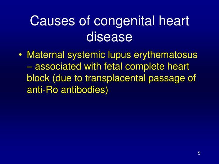 Causes of congenital heart disease