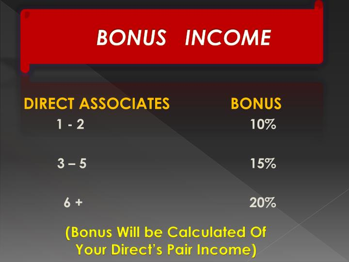 BONUS   INCOME