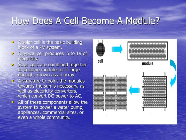 How Does A Cell Become A Module?