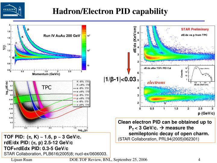 Hadron/Electron PID capability