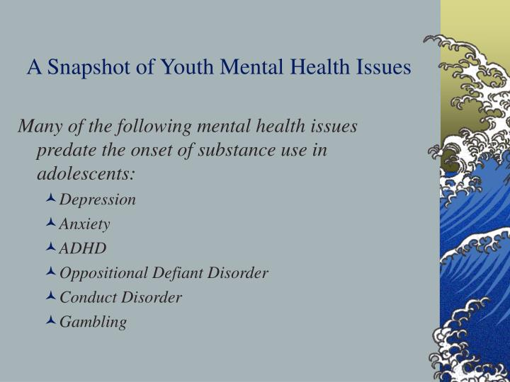 A Snapshot of Youth Mental Health Issues