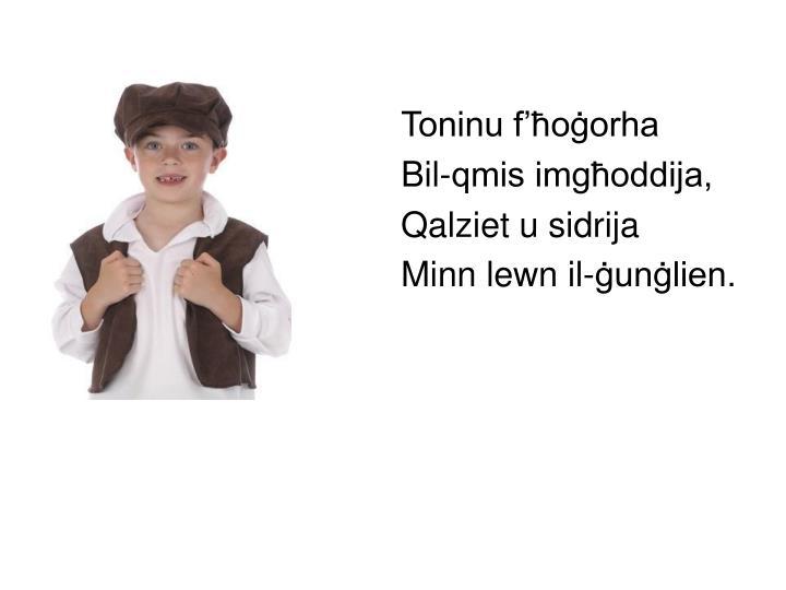 Toninu f'ħoġorha
