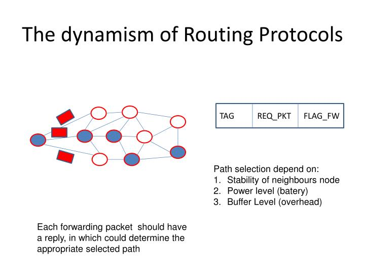 The dynamism of Routing Protocols
