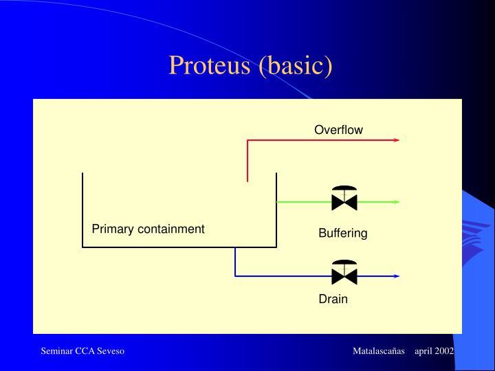Proteus (basic)