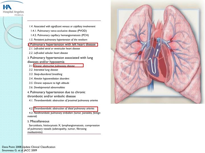Dana Point 2008.Update Clinical Classification