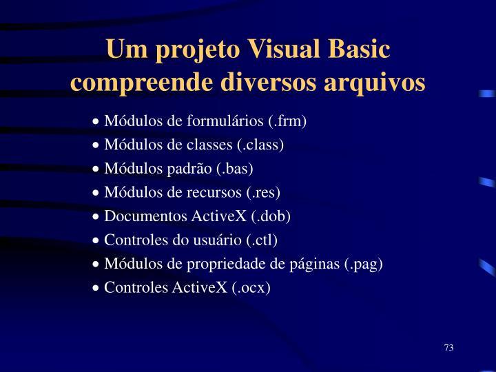 Um projeto Visual Basic compreende diversos arquivos