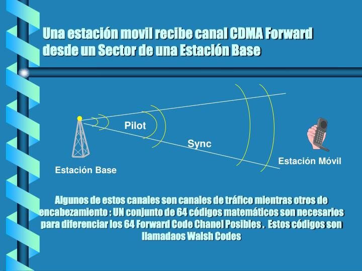 Una estación movil recibe canal CDMA Forward desde un Sector de una Estación Base