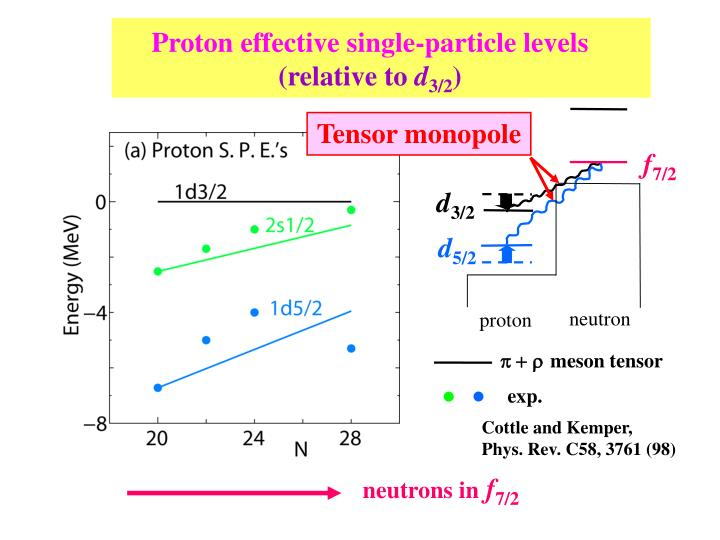 Proton effective single-particle levels