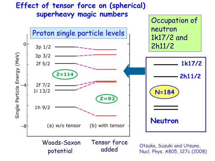 Effect of tensor force on (spherical)