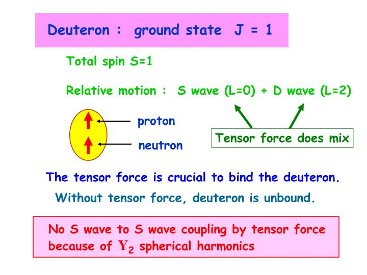 Deuteron :  ground state  J = 1