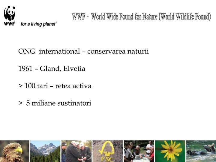 WWF -  World Wide Found for Nature (World Wildlife Found)