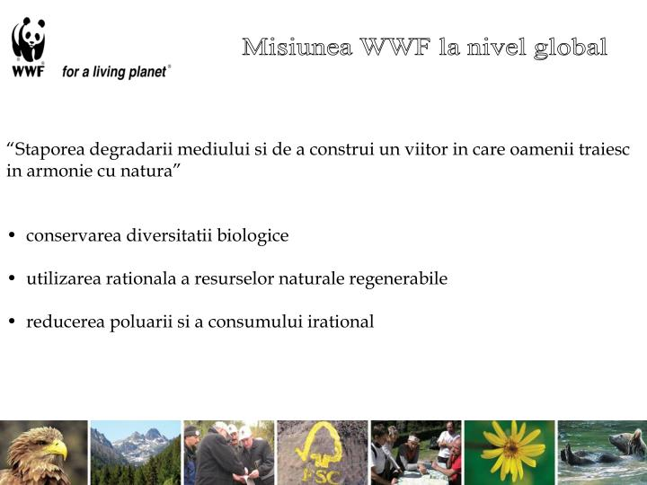 Misiunea WWF la nivel global