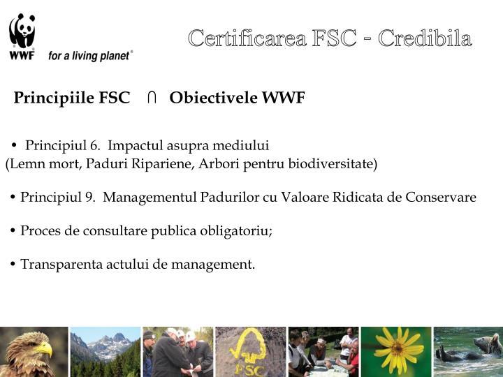 Certificarea FSC - Credibila