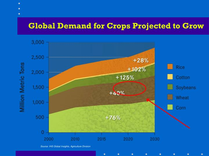 Global Demand for Crops Projected to Grow
