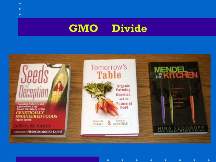 GMO     Divide