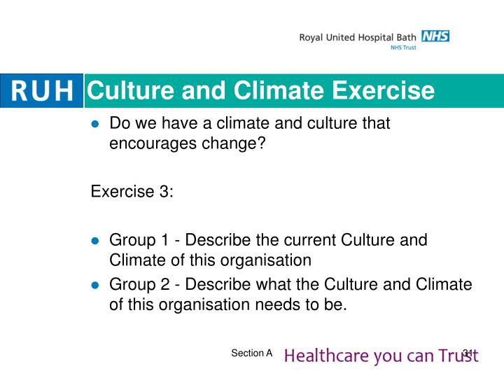 Culture and Climate Exercise