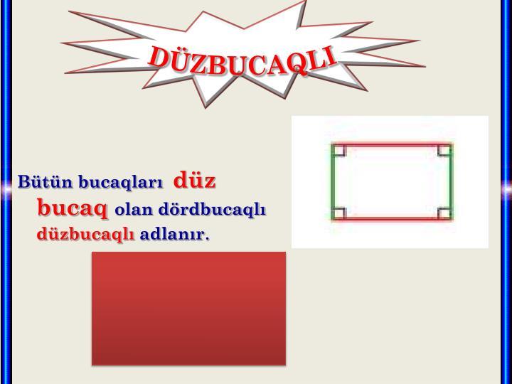 DÜZBUCAQLI
