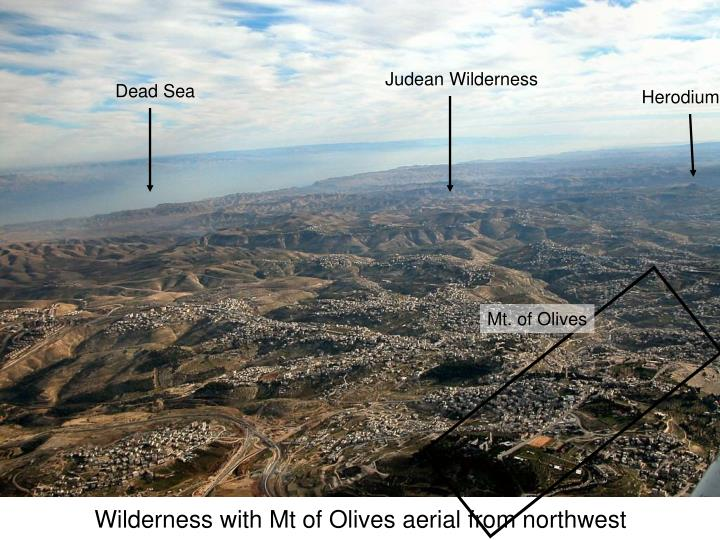 Wilderness with Mt of Olives aerial from northwest