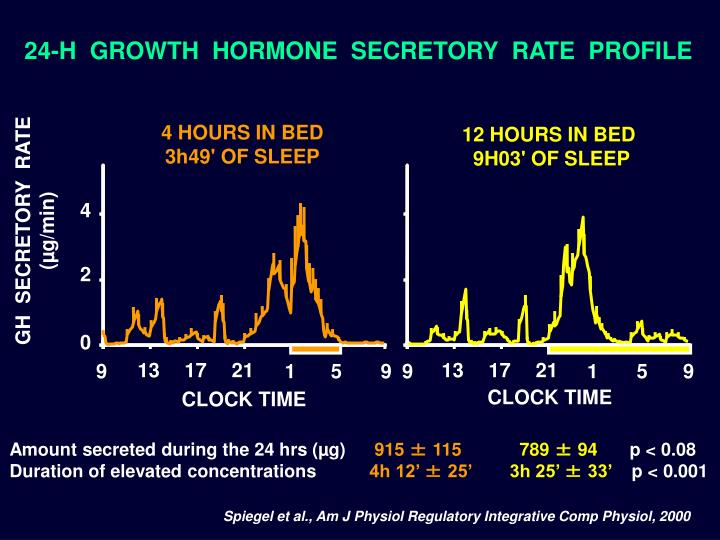 24-H  GROWTH  HORMONE  SECRETORY  RATE  PROFILE