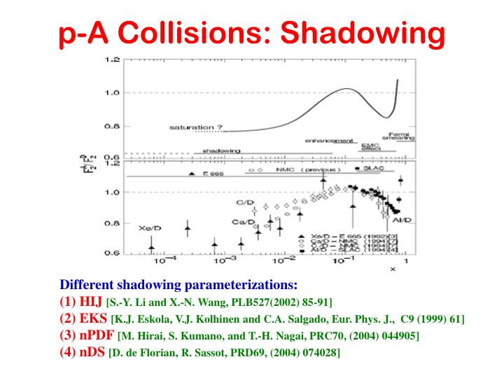 p-A Collisions: Shadowing