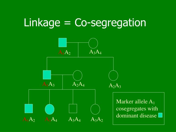 Linkage = Co-segregation