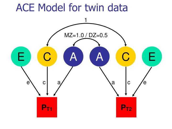 ACE Model for twin data