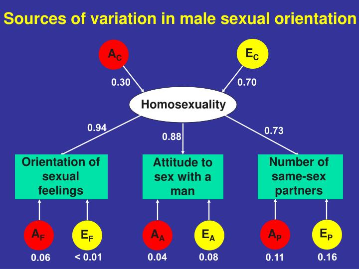 Sources of variation in male sexual orientation