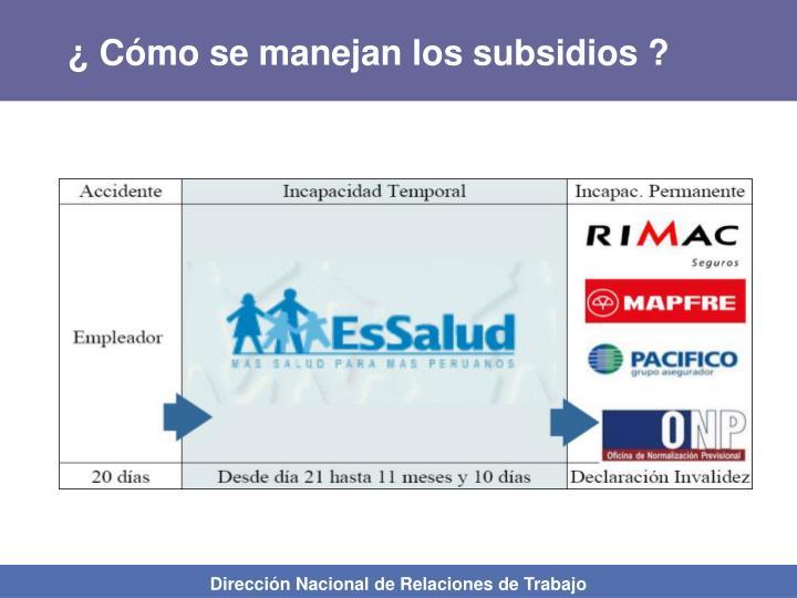 ¿ Cómo se manejan los subsidios ?