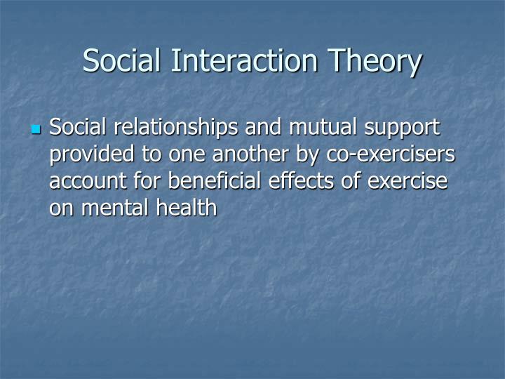 Social Interaction Theory