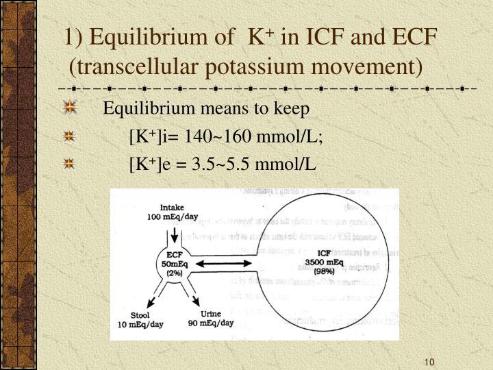 1) Equilibrium of  K