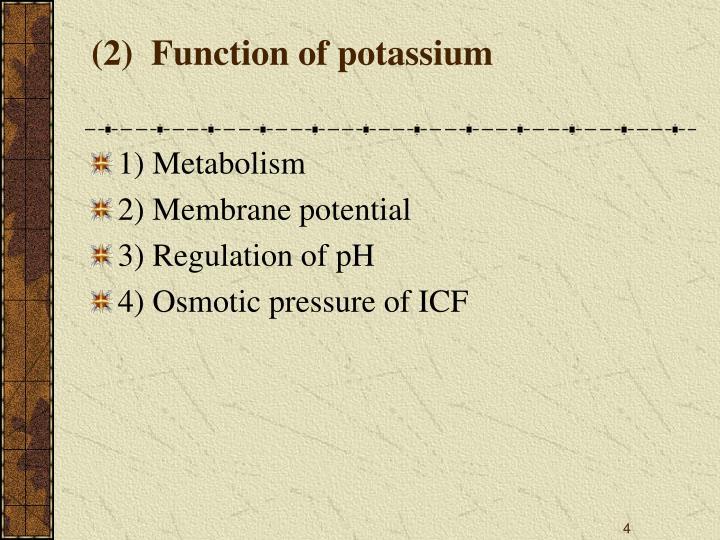 (2)  Function of potassium