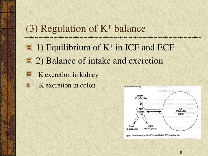 (3) Regulation of K