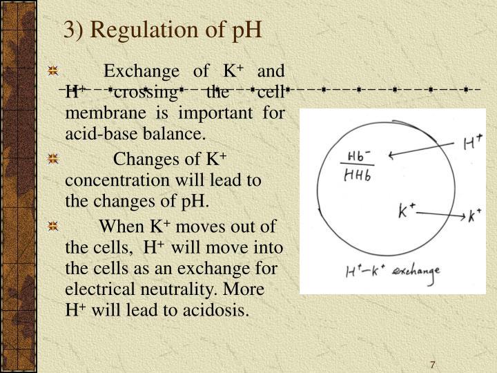 3) Regulation of pH