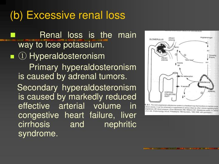 (b) Excessive renal loss