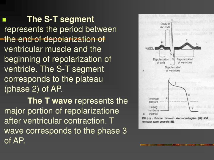 The S-T segment