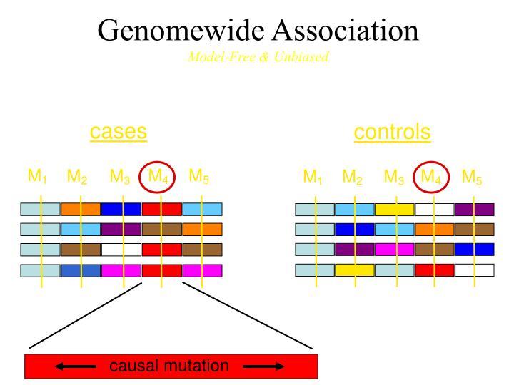 Genomewide Association