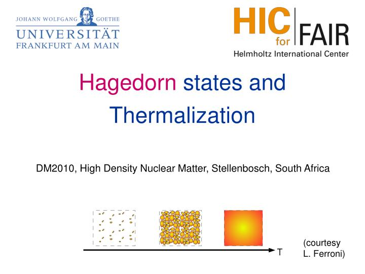 Dm2010 high density nuclear matter stellenbosch south africa