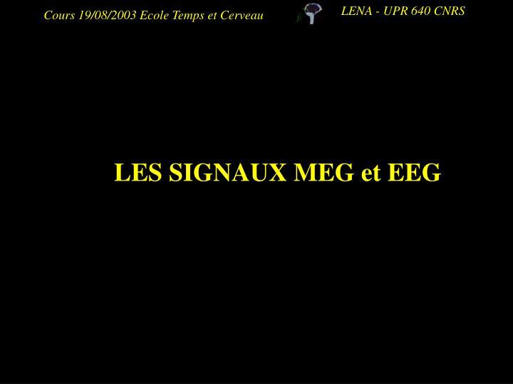 LES SIGNAUX MEG et EEG