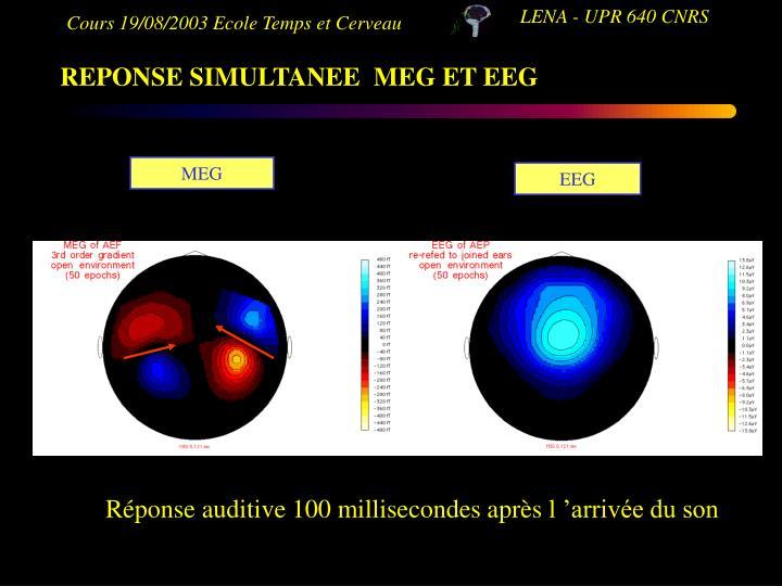 REPONSE SIMULTANEE  MEG ET EEG