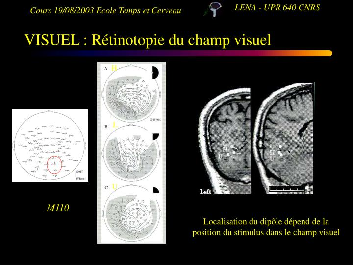 VISUEL : Rétinotopie du champ visuel