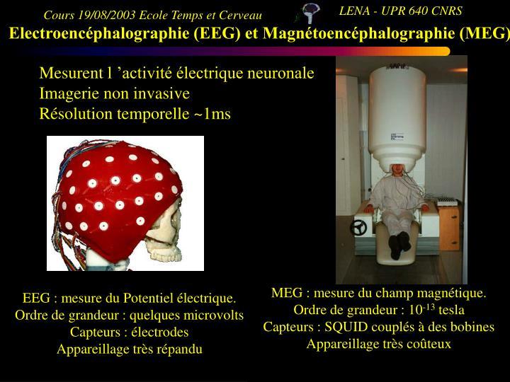 MEG : mesure du champ magnétique.