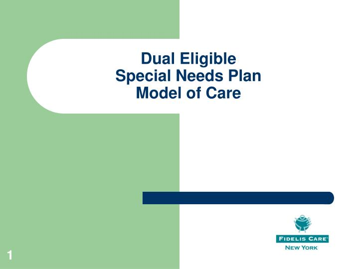 Dual eligible special needs plan model of care